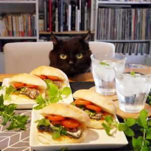 void、映画、シネマガゼット、シネマ、おうちシネマ、おうち時間、cinemacatcafe、オイルサーディン 、エスニック風、サンドイッチ、oiledsardine、黒猫、猫、cat,blackcat,stayhome,homemade,cooking,手作り、パクチー