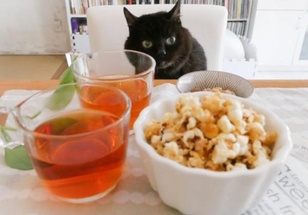 Cinema cat cafe,シネマキャットカフェ,ポップコーン、キャラメルポップコーン、猫、おうちシネマ、お家シネマ、巣ごもり、ルームシアター、手づくり、黒猫、popcorn,caramel popcorn,cat,black cat,ホームシアター、ルームシアター、巣ごもり映画、cinema