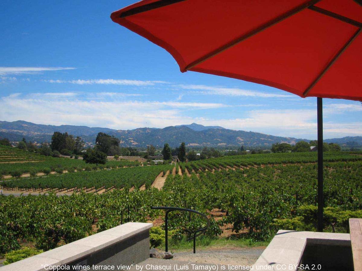 コッポラ・ワイナリー、Pool House、フランシス・フォード・コッポラ・ワイナリー、Francis F. Coppola Winery、